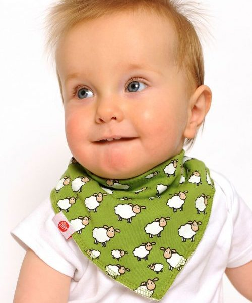 Zippy Bandana Bibs - On the Farm
