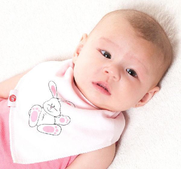 Zippy Bandana Bibs - Cute Pink