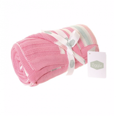 Zippy Baby Blanket - Pink & Green Stripes
