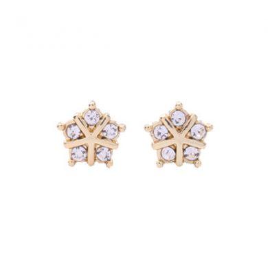 tiny star earrings