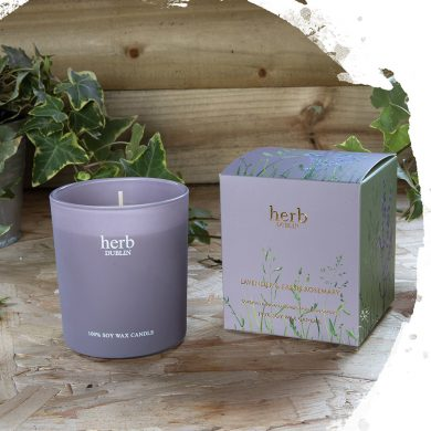 Herb Dublin Lavender boxed Candle